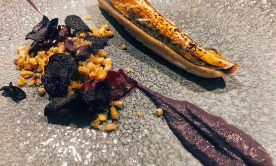 Mackerel and miso, red cabbage and spelt at restaurant Tamo in Spoltore (Pescara)
