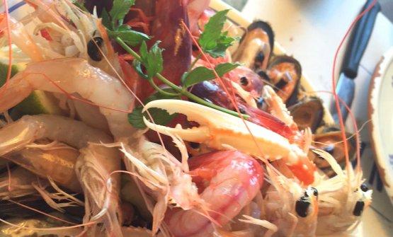 Il piatto dei crudi alla Taverna del porto