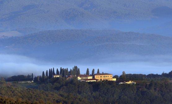 Tenute Silvio Nardi, il panorama al Casale del Bosco (fotoAndrea Dapueto)