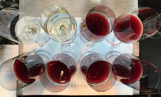 I vini in degustazione: i due vini bianchi, il Balbino e il Montendonico, assieme alle sei annate di Madrechiesa, dal 2009 fino al 2014