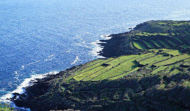 Pantelleria è un'isola dai panorami intensi, mozzafiato. I terrazzamenti che ne caratterizzano la ricca attività vitivincola contribuiscono alla bellezza di questi paesaggi