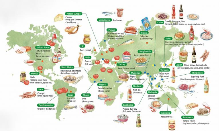 Food rich in umami, around the world and across history
