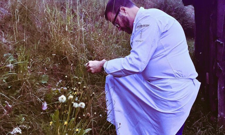 Giancarlo Morelli alla ricerca di erbe di montagna
