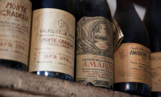 Luca Torretta è stato per IdentitàGolose ai festeggiamenti per i 50 anni di Santa Sofia, azienda vinicola in Valpolicella. E ci racconta i suoi assaggi