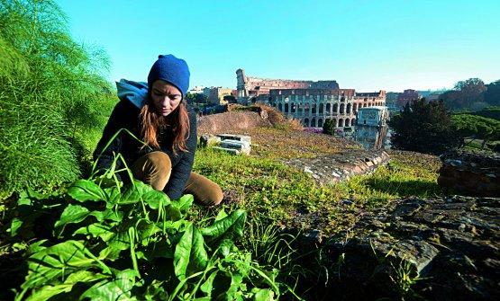 Valeria Margherita Mosca, forager, guida e chef,