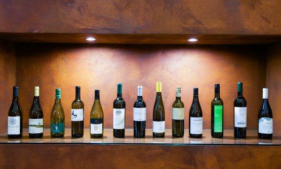 I vini delle 13 cantine affiliate all''Associazione Produttori Verdicchio di Matelica, una Doc con 50 anni di storia (fotoStefano Triulzi)