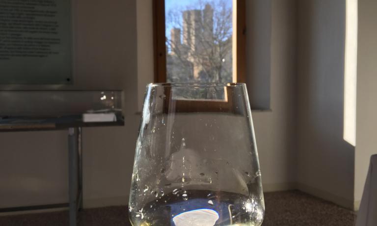 Buon livello dei vini, qualche dubbio sull'effettivo utilizzo in purezza del vitigno Vernaccia di San Gimignano