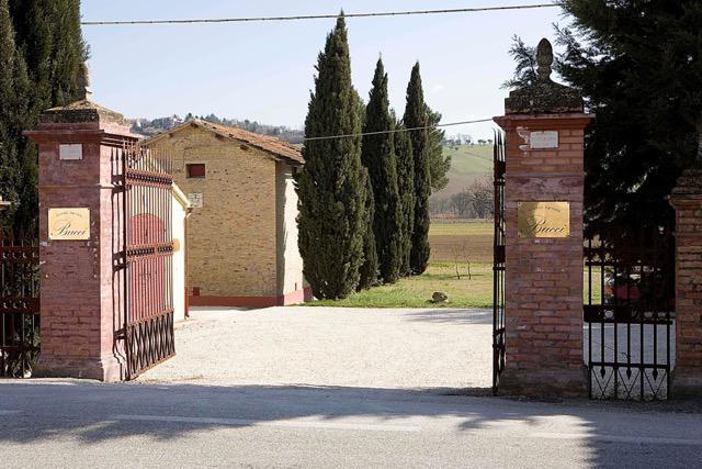 L'ingresso all'azienda Villa Buccia Ostra Vetere (Ancona), una delle più importanti per la produzione di Verdicchio dei Castelli di Jesi. La famiglia Buccisi occupa di agricoltura dal 1700 ed è originaria di Montecarotto, uno dei Castelli di Jesi