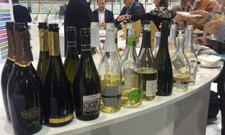 Le bottiglie del Consorzio dei Vini Piceni in degustazione al Vinitaly
