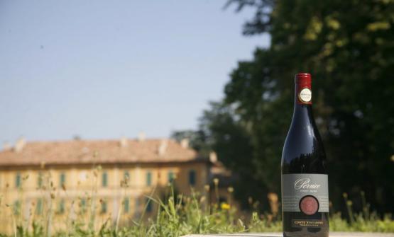 Il Pinot Nero Pernice e, sullo sfondo, Villa Fornace