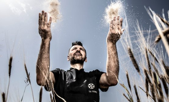 Antonio Polzella, pizzaiolocoltivatore, come ama definirsi. Oltre al lavoro di olivicultura, da quest'anno ha deciso di dedicarsi anche a quattro grani antichi da far crescerenel suo campo