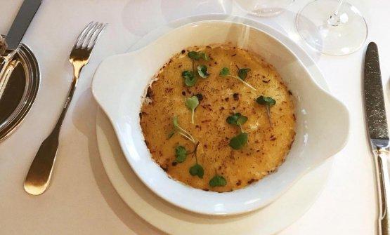Onion au gratin