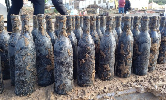 The bottles of Trepat del Jordiet 2018 saved from the mud