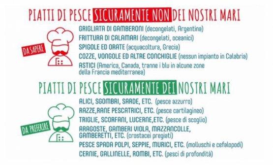 Che pescato ordinare in Calabria con la certezza che sia locale? Lo spiega questo manifesto, promosso daSlow Food Pollino Sibaritide Arberia assieme al Flag Borghi Marinari dello Jonio