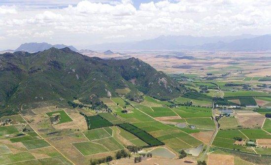 La tenuta diAyama Wines, Paardenberg Road, Windmuel7630,+27218698313