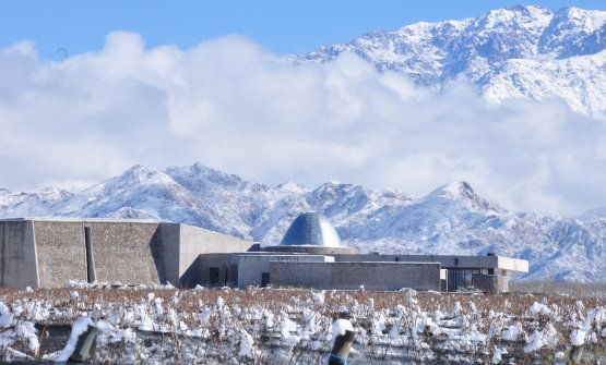 Zuccardi - Valle de Uco in the winter