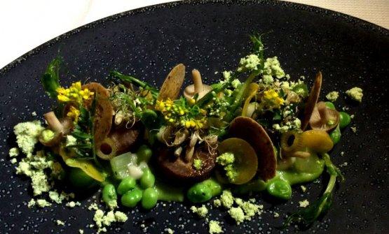 Il piatto vincitore della edizione 2017 di The Vegetarian Chance:Zuppa di pisellidell'olandese Gijs Kemmeren