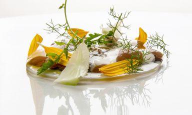 Velo di mela, cavolfiore fermentato, panna acida: il piatto del 2021 di Stefano Sforza