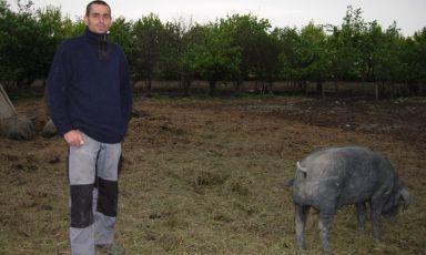 L'uomo che sussurrava ai maiali