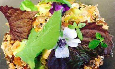 L'insalata che vien dal bosco