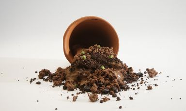 Tierra de Cacao è il signature dish di CarlosGa