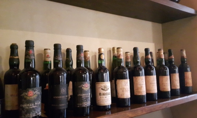 Sella & Mosca offers over 30 wines from autochthonous and international varieties