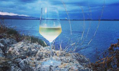 Un vino che profuma di mare: «Vermentino, bandiera della Maremma»