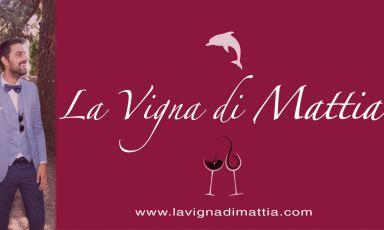La Vigna di Mattia, storia di un sogno più forte del destino