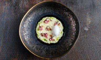 Risotto aspro,fiori di Sakura sotto sale, olio di fichi e gelato di ginepro e alga kombu