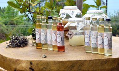 Le bevande fermentate Kruda di Laura Colagreco a Mentòn: «Un giardino in bottiglia»