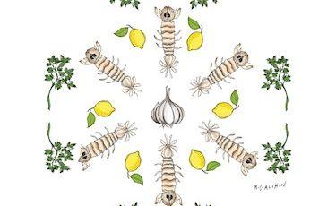 Le Cannocchie (o canocchie) del venerdì è un piatto presentato da Mauro Uliassidel ristorante Uliassi di Senigallia (Ancona) a Identità Milano 2012. Associano una tecnica tradizionale, olio-limone-prezzemolo, a un procedimento più 'al passo': sono cotte in acqua di vongole