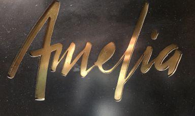 Airaudo e il segreto vincente di Amelia