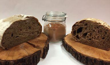 Pane fatto con farina di corteccia, antica tradizione friulana
