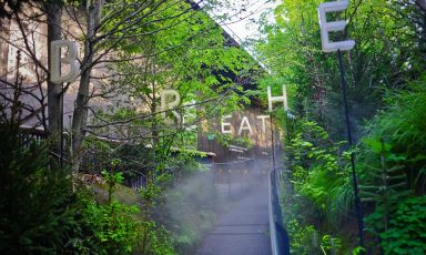 Entrare nel padiglione austriaco significa entrare in un suggestivo bosco, che accoglie i visitatori con un'aria fresca e rigenerante