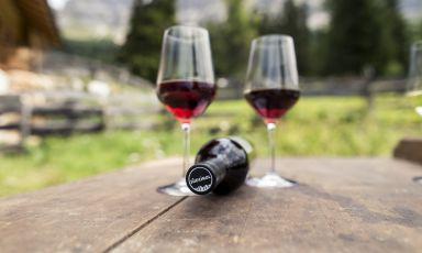 Il futuro dei vini dell'Alto Adige: si punta su altitudine e sostenibilità