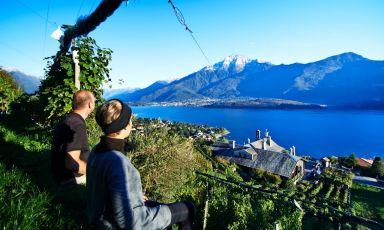 Cantine Angelinetta, piccolo ma prezioso gioiello sul lago di Como