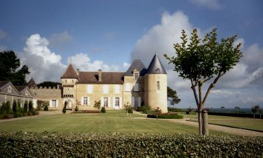 Château d'Yquem: a unique territory from which, with obsessive care, only the best grapes are selected to produce a true icon wine