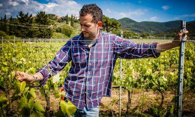 Una porta sul Mediterraneo: i vini di Fabio Motta