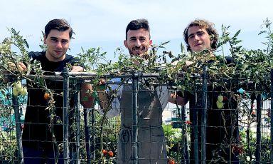 I due fratelli Alesiani nell'orto del loro ristorante, il Don Diego, sulla spiaggia di Grottammare: Zaccaria a sinistra e Lancillotto a destra. Tra loro due, Reald Prifti, socio del primo e chef del Don Diego