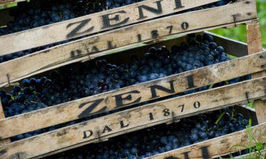 Zeni e la FeF Collection: ecco i vini firmati dalla famiglia