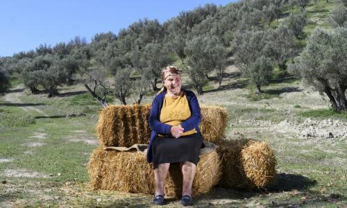 Foto Brambilla - Serrani