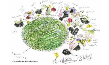 Dal disegno al piatto: 40 grandi chef e pasticcieri durante il processo creativo