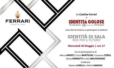 Siete invitati al webinar sulla sala di Cantine Ferrari: Lunelli e Marchi con grandi ospiti