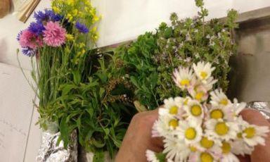 The tuber (and flower) revolution