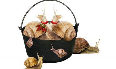 Sizzicorrus cun bagna: la ricetta delle lumache al sugo al modo di Sant'Elia, borgo di Cagliari