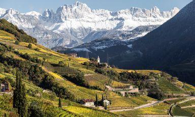 La superficie vitata dell'Alto Adige è pari apoco più di 5.500 ettari, distribuita nelle zone climatiche più disparate, su terreni diversi e a quote che variano fra 200 e più di 1.000 metri sul livello del mare. Qui uno scorcio di Santa Maddalena in Val di Funes