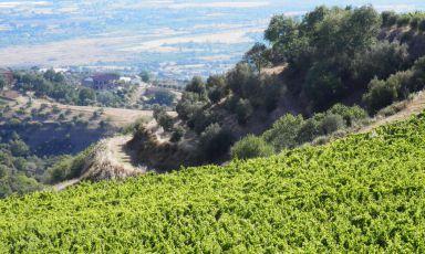 Calabria felix (parte seconda)