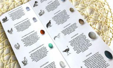 La mia carta delle uova