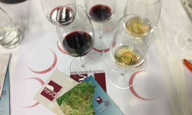 Da Noto a Siracusa, un viaggio nei profumi e nei colori del vino