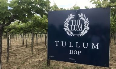 Dieci anni della Dop Tullum